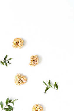 Floral border frame made of dry pastel beige roses on white background. Flat lay, top view. Floral texture background. stock vector