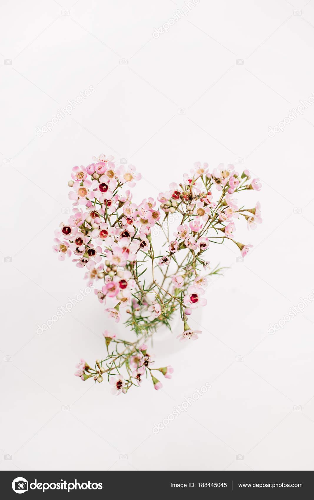 Ramo Flores Silvestres Isolado Fundo Branco Ver Cima Estabelecer