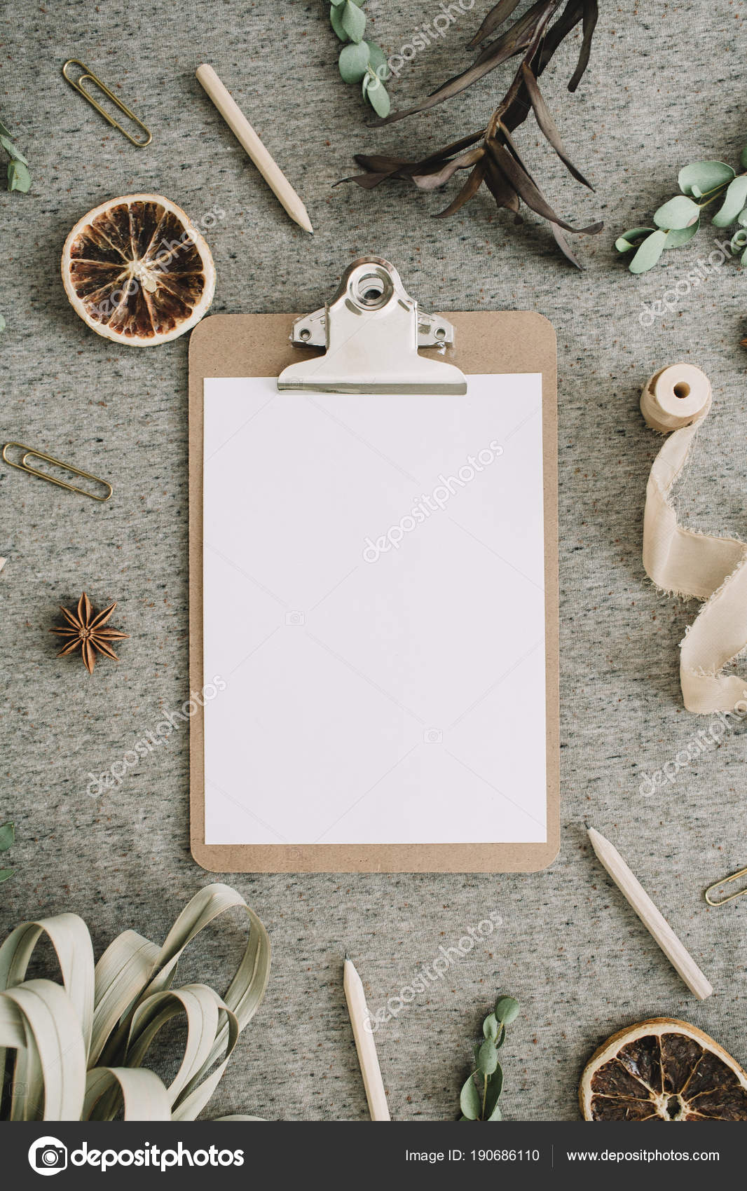 Clipboard Blank Paper Mock Frame Eucalyptus Branches Dried Oranges ...