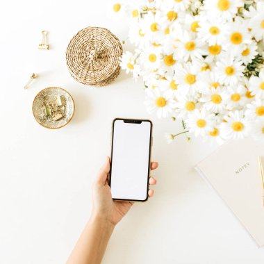 Women's hand hold smartphone with blank screen. Home office desk workspace with chamomile daisy flowers bouquet and notebook on white background. Flat lay, top view mockup copy space. stock vector