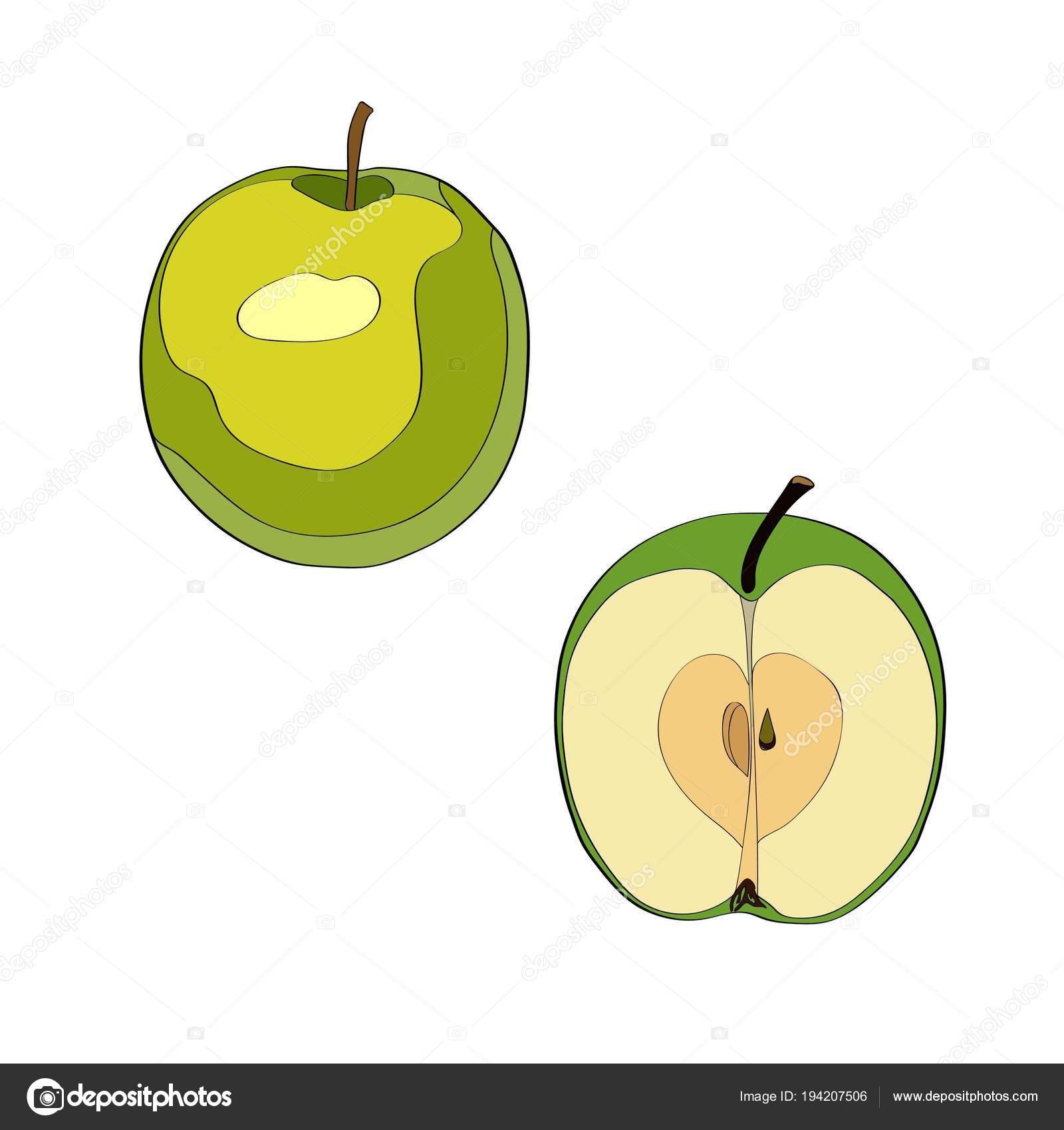 Vektör çizim Dilimlenmiş Elma Elma Yarım Elma Siyah çizgi