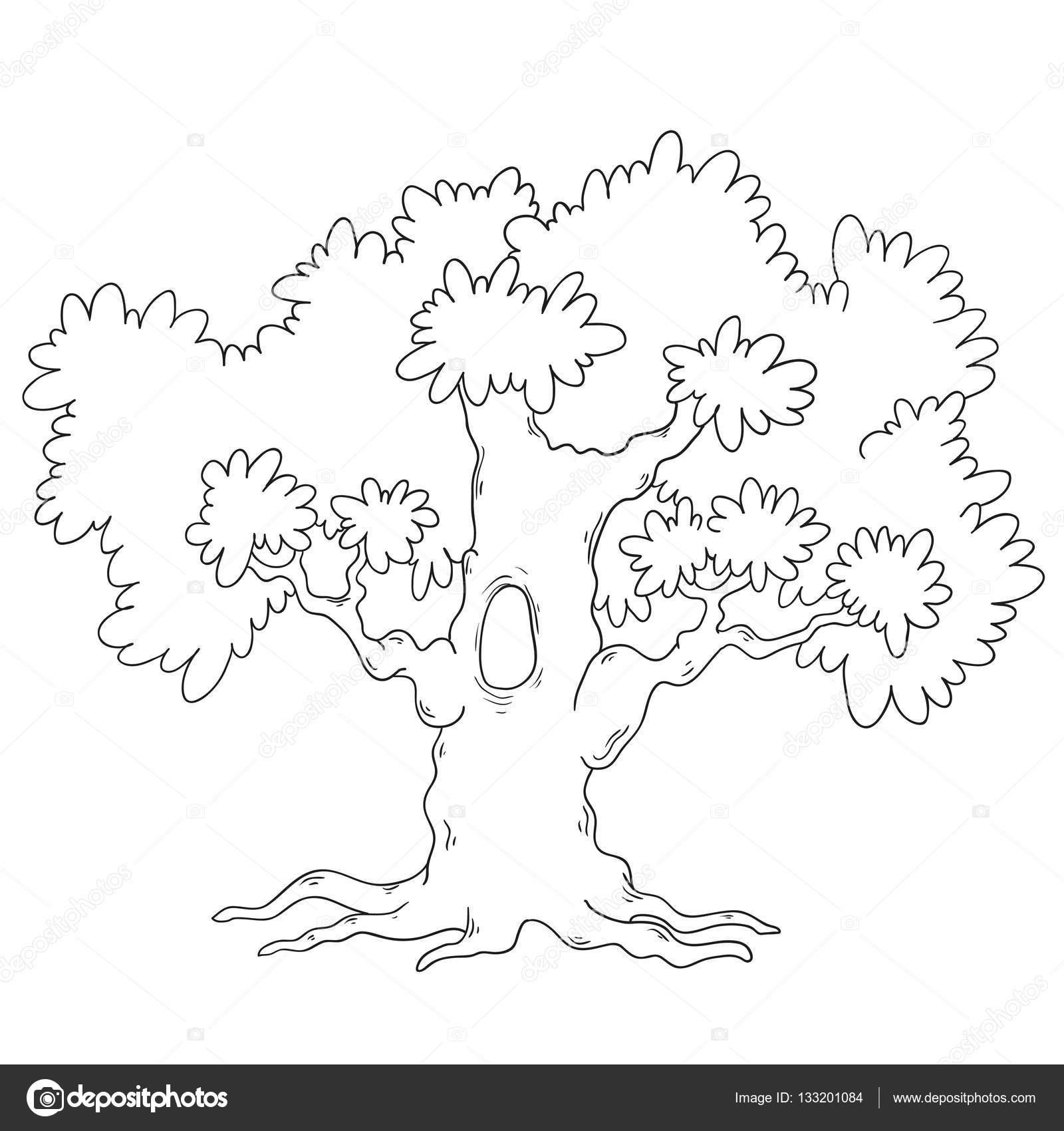 Ağaç Boyama Kitabı çizgi Film Ağaç Devre Vektör Stok Vektör