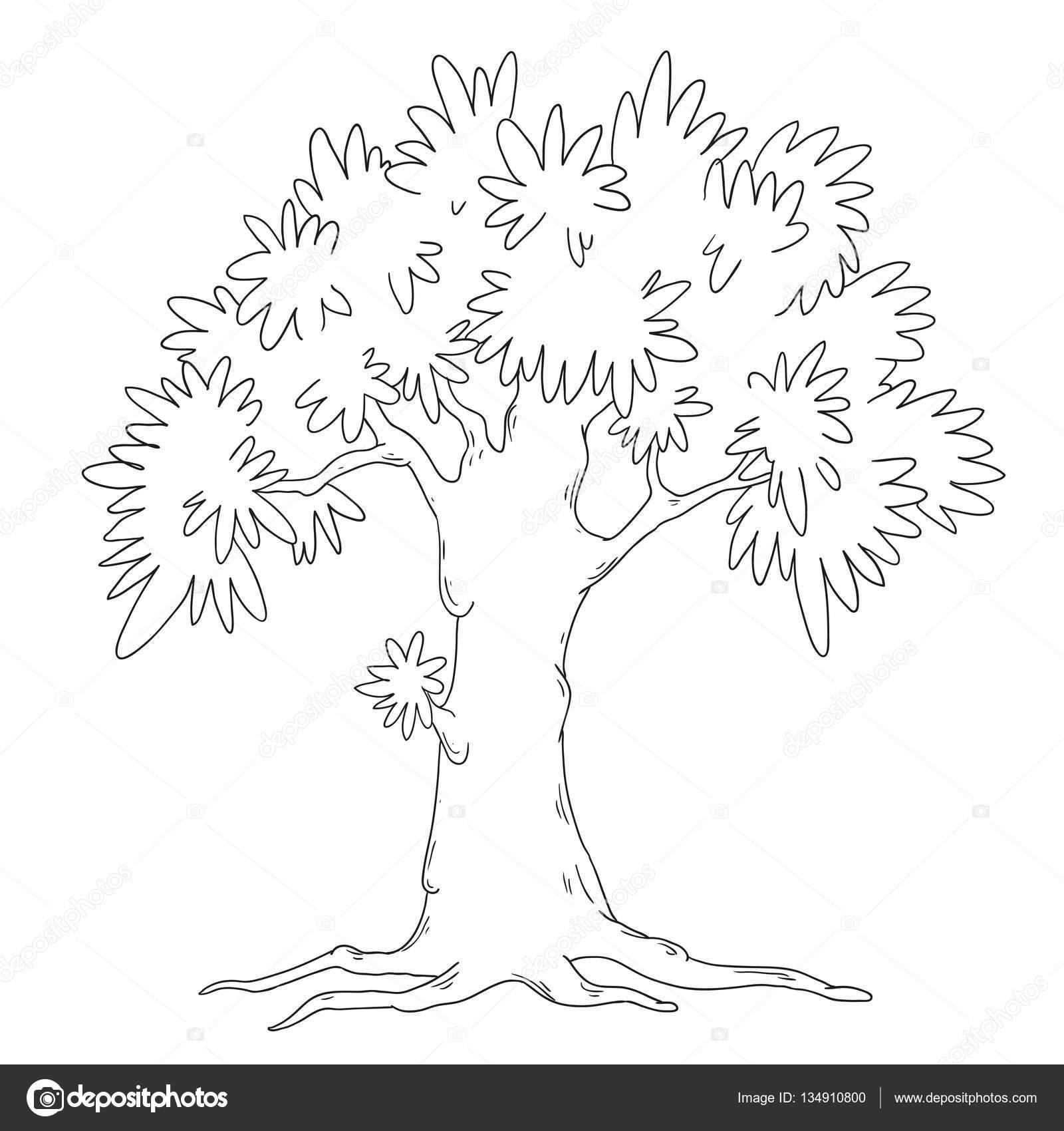 Libro Para Colorear De árbol Vector árbol De Hoja Caduca Aislado