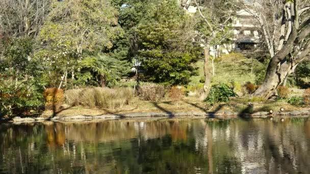 Tokio, Japonsko-December 13, 2017: Arisugawa-no Mija Memorial Park je japonská zahrada na okraji náhorní plošiny Azabu, Tokio. Park poskytuje příjemné rozmanitosti scény