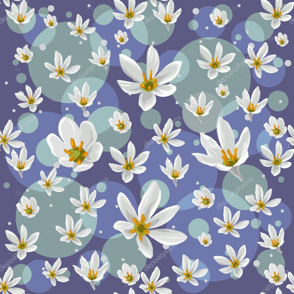 Seamless pattern with white  zephyranthes flowers on blue background