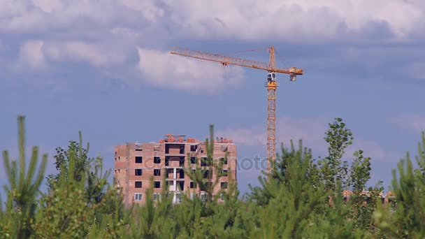 Výstavba v oblasti lesa