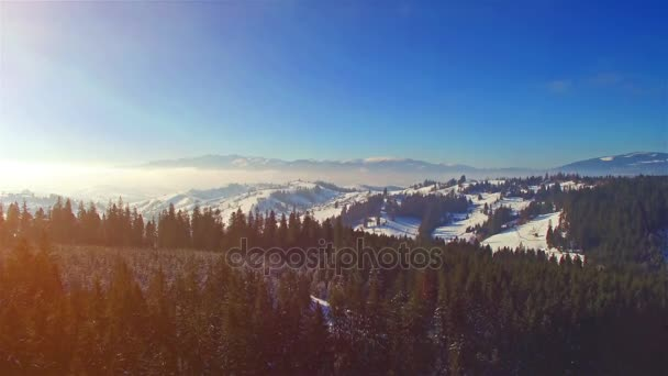 Schnee Winterlandschaft. Fliegen Sie über. Luftaufnahme. Sonne-Fackel. Bäume-Silhouette. Natur