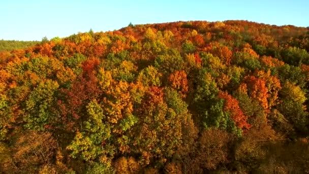 Pohled na letecké záběry. Let nad podzimní hory s lesy, louky a kopce v západu slunce měkké světlo.