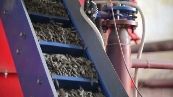 Lieferung von Holzpaletten in einem Industriekessel. Alternative Kraftstoffe