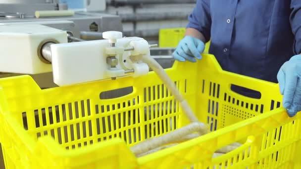 Gyártósor a kolbász closeup. A női munkás keze a kolbászgyártósor üzemeltetését szabályozhatja. Húsfeldolgozó üzem kolbászok gyártásához.