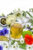 Close up Various fresh herbs and herbal tea on white fresh medicinal plants and in bundle. Preparing medicinal plants for phytotherapy and health promotion,