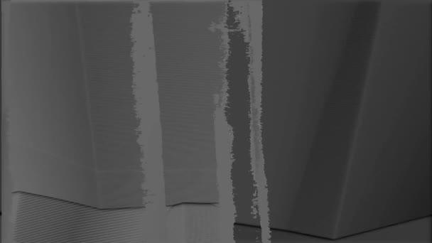 černé a bílé rippped linky 4