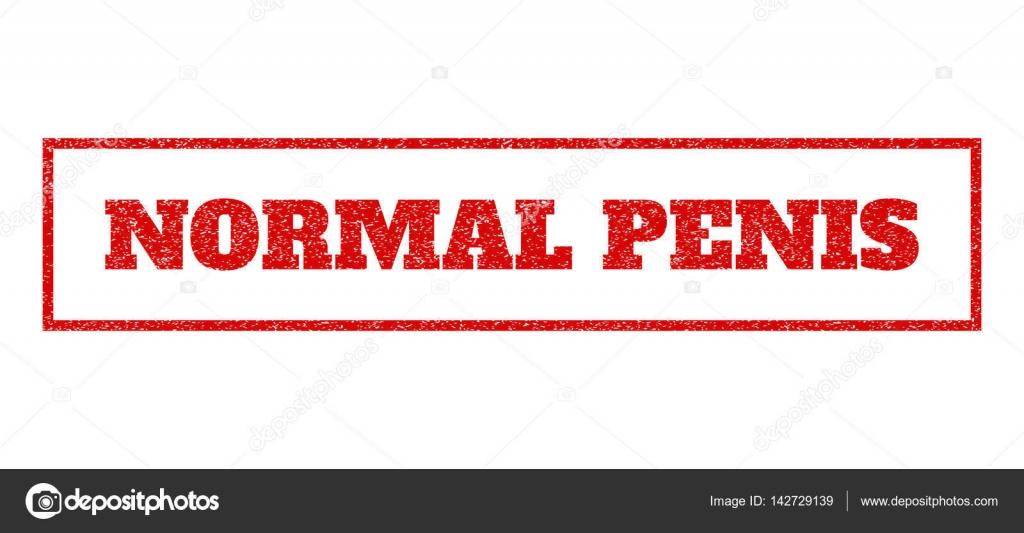 normal penisstørrelse