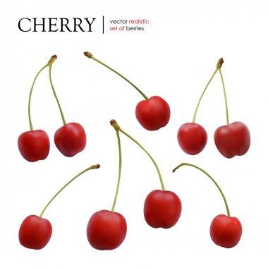 Vector illustration: Set of realistic cherries