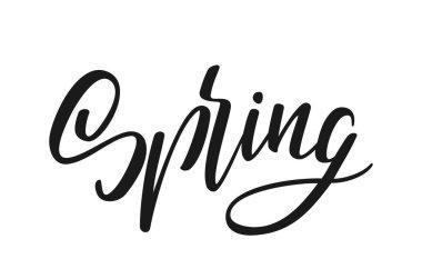 Vector illustration: Handwritten lettering of Spring. Hand drawn modern brush calligraphy design