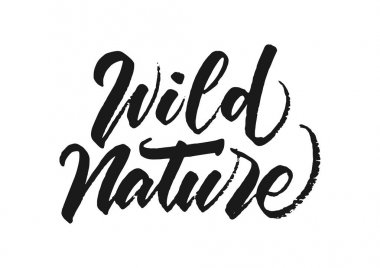Handwritten brush lettering of Wild Nature on white background.