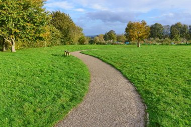 Winding Pathway through Beautiful Country Park