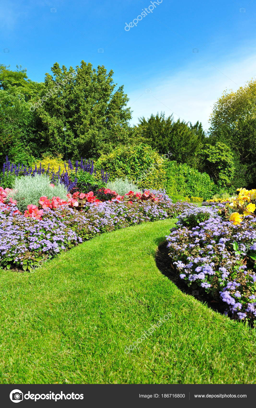 Decorated Innocent Garden Bright Green Plants Colourful Flowers Stock Photo C 1000words 186716800