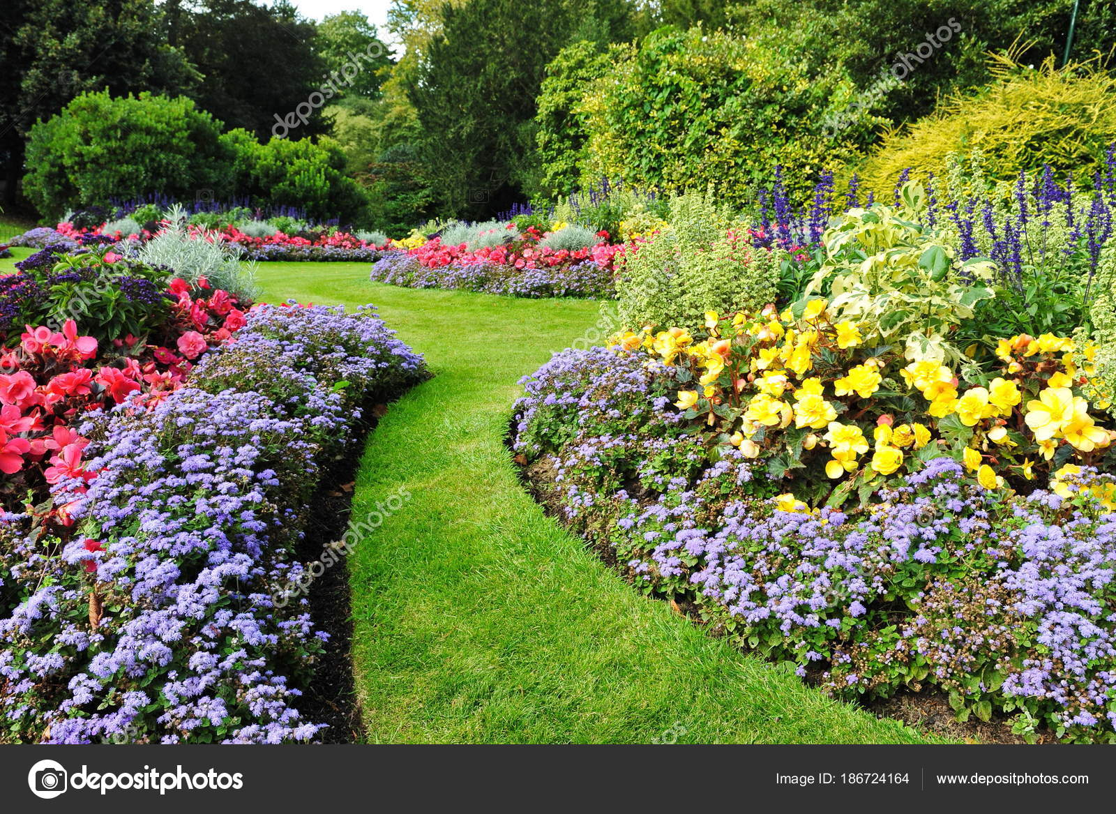 Decorated Innocent Garden Bright Green Plants Colourful Flowers Stock Photo Image By C 1000words 186724164