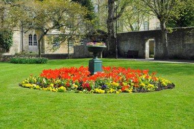 Decorated flowerbed in center of green garden