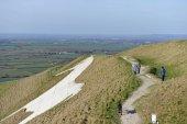 Westbury, Česko - 22. března 2015: lidí, kteří jdou na bílém koni Westbury Salisbury rovina ve Wiltshire