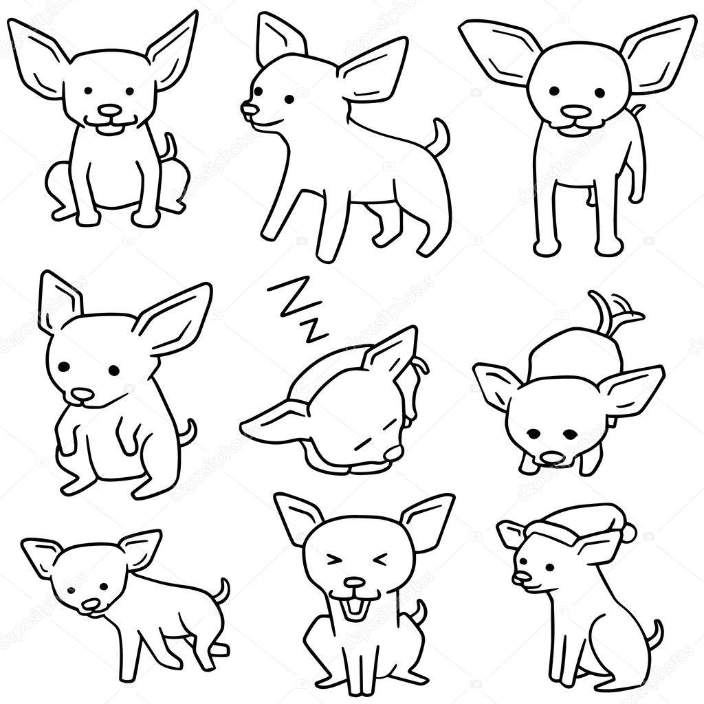 Vector conjunto de perros, chihuahua — Archivo Imágenes Vectoriales ...