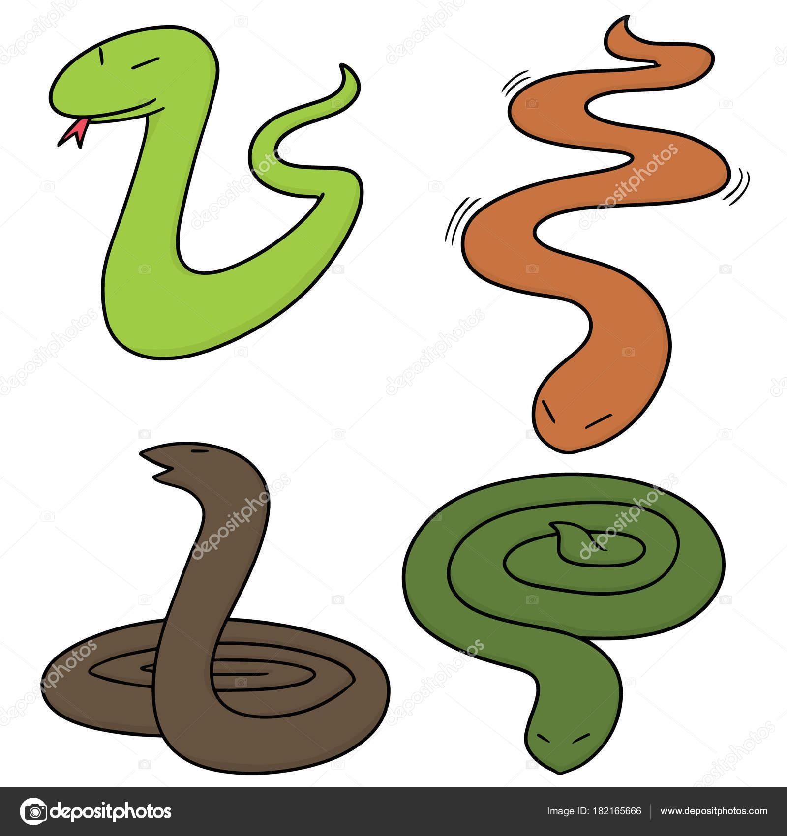 Dibujos Viboras Con Color Vector Conjunto Serpientes Vector De