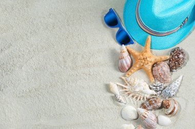 Sea background. Seashells flat still with white sand and child`s