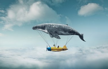 whale with aircraft and two girls over clouds