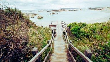 """Картина, постер, плакат, фотообои """"шаги к пляжу в национальном парке торндиррупп """", артикул 134450420"""