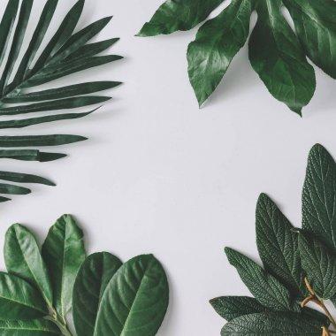 Creative minimal arrangement of leaves