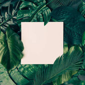 Photo Creative layout made of tropical leaves