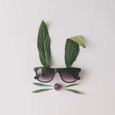 bunny rabbit face made of natural green leaves with sunglasses on bright background, easter minimal concept