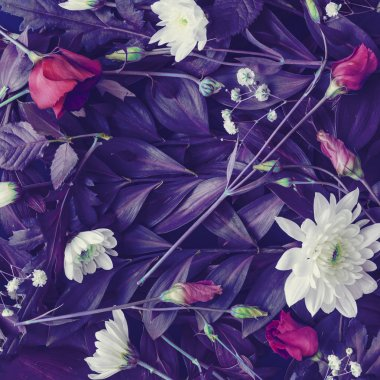 creative layout of white paper card with tropic purple leaves and flowers , supernatural concept