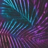Fényképek kreatív tropic lila és zöld levelek elrendezés, természetfeletti koncepció