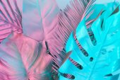 Photo Tropical and palm leaves in vibrant bold gradient holographic colors. Concept art. Minimal surrealism.