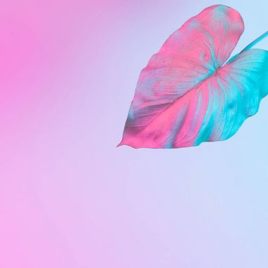 tropical leaf in vibrant bold gradient holographic neon colors, Concept art, Minimal surrealism