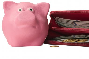 pink piggy pig with a purse full of money