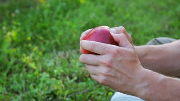 Male hands split ripe red apple