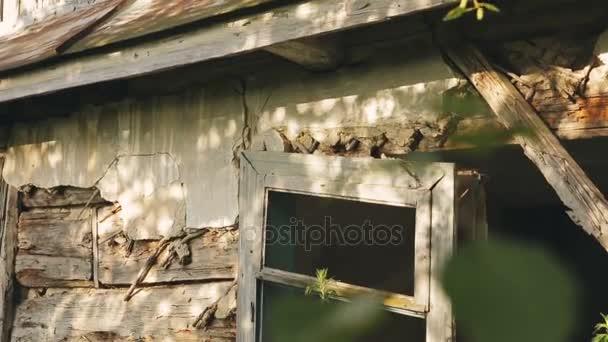 Technologie dřevostaveb rozmazaně s jílem