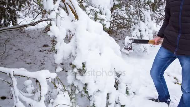 Vánoční strom je pokryta sněhem