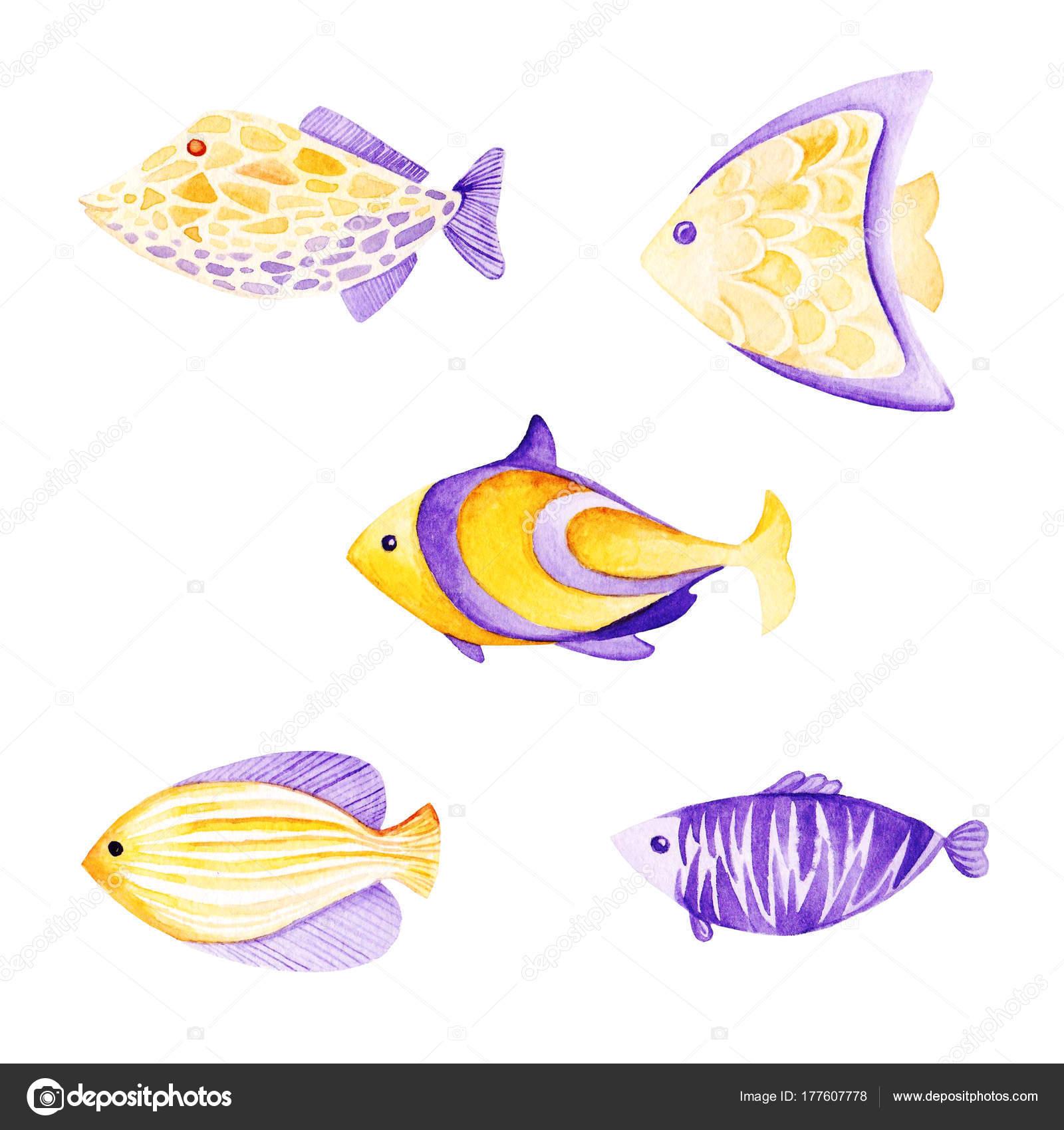 Beste Fisch Färbung Vorlage Bilder - Beispiel Wiederaufnahme ...