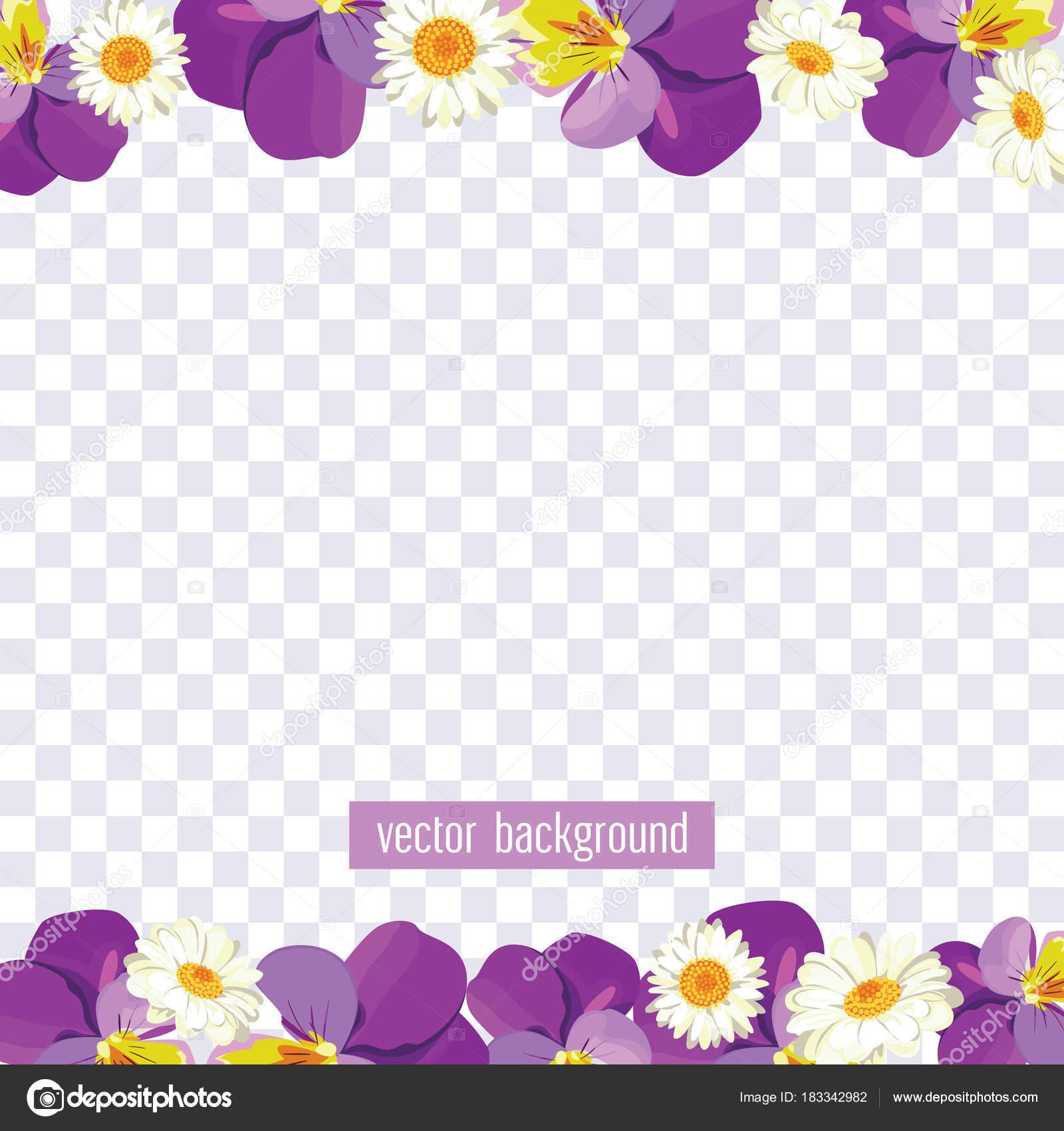 Floral Borders On Transparent Background Vector Illustration Stock