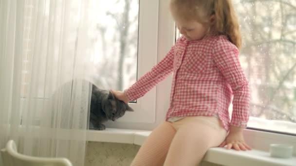 Holčička je krmení kočka sedí u okna