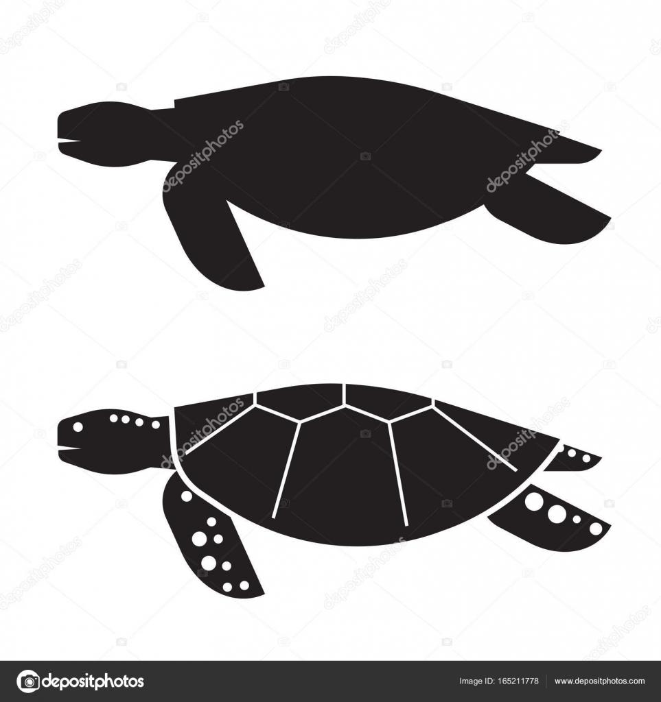 Tortugas Marinas Contorno Icono O Logo Vector De Stock Krugli86