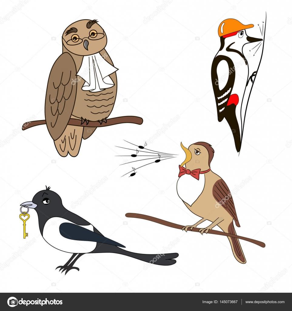 set vogels uil specht ekster nachtegaal
