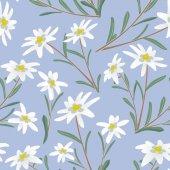 Fotografie edelweiss seamless pattern