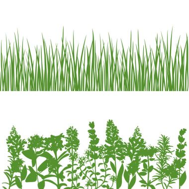 Grass and plants detailed silhouettes on white.