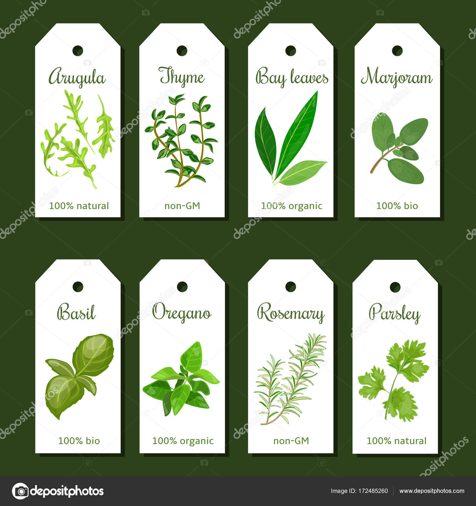 Cooking Herbs Tags Cute Label Set Stock Vector C Everilda Mary