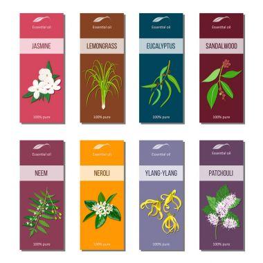 Essential oil tags collection. Sandalwood, patchouli, Ylang-ylang, neem, neroli, lemongrass, Eucalyptus, jasmine